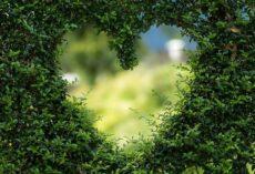 Zadbanie o pracę serca
